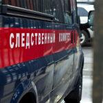 В Новосибирске школьница разбилась насмерть во время катания с горки | анонсы на oremontekvartir