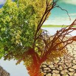 Ученый предупредил о грядущем изменении климата в России | анонсы на oremontekvartir