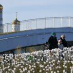 Синоптик рассказал, какими будут весна и лето  | анонсы на oremontekvartir