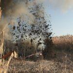 Кондратьев рассказал, когда на Кубани улучшится водоснабжение  | анонсы на oremontekvartir