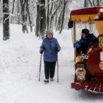 Россиянам разъяснили, кто может досрочно выйти на пенсию | анонсы на oremontekvartir