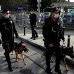 Жириновский призвал россиян не ездить в Турцию | анонсы на oremontekvartir