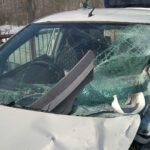На Ямале водитель получил 10 лет за «пьяное» ДТП с тремя погибшими | анонсы на oremontekvartir