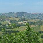 Правительство Италии получило вотум доверия в нижней палате парламента | анонсы на oremontekvartir